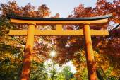 Red Torii with Autumn Leaves — Stock Photo