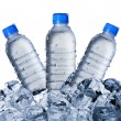 Cold Water Bottles On Ice Cubes — Stock Photo #64740945