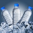 Cold Water Bottles On Ice Cubes — Stock Photo #64740947