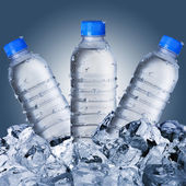 Cold Water Bottles On Ice Cubes — Stock Photo