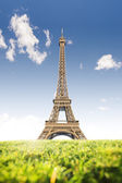 Eiffel Tower with grass in the foreground — Stock Photo