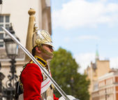 Queens Guardsman — Stock Photo