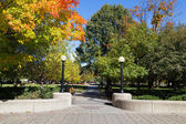 Confederation Park — Stock Photo