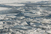 Frozen Ice and Snow on Lake Ontario — Stockfoto