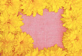 Frame of yellow flowers against a background of pink cloth — Stock Photo