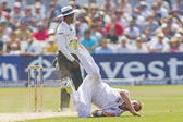 The Investec Ashes First Test Match Day Five — Stock Photo