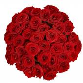 Bouquet of beautiful red roses on a white background with clipp — Stockfoto