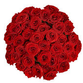 Bouquet of beautiful red roses on a white background with clipp — Foto de Stock