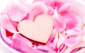 The wooden hearts on pink carnation petal.  - Concept for love a — Stock Photo