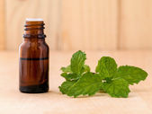 Bottle of mint essential oil on wooden background with selective — Stock Photo