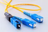 Fiber optik bağlayıcılar sembolik fotoğraf hızlı internet için bağlanma — Stok fotoğraf