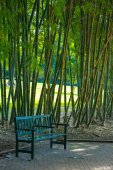 Chair in bamboo park — Stock Photo