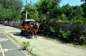 Cartage on Gili Trawangan — Stock Photo