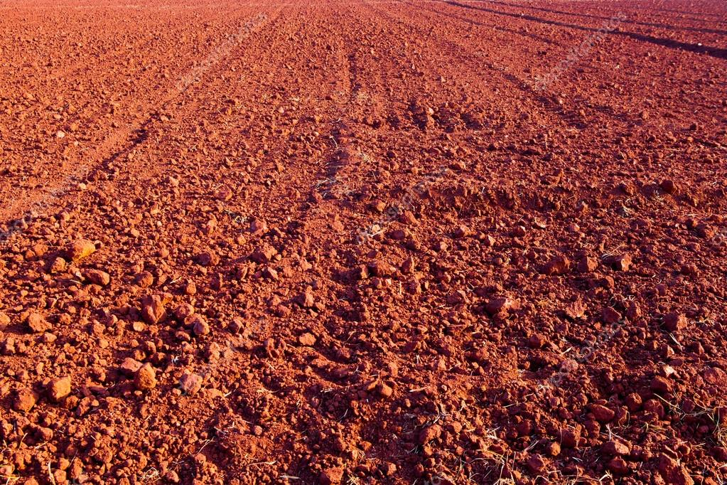 Laterite soil the image kid has it for T and t soils