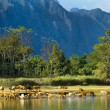 Vang Vieng — Stock Photo #56160055