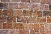 полнотелый кирпич — Стоковое фото