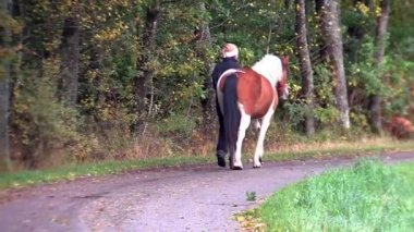 Walking with horse — Stock Video