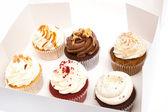 Geburtstag-muffins — Stockfoto