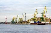 Cranes in the marine cargo port of Saint-Petersburg  — Stock Photo