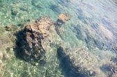 Beautiful mediterranean sea in turkey — Foto Stock