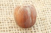 Hazelnut on jute background — Foto Stock