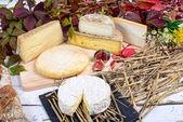 Francuski ser talerz — Zdjęcie stockowe