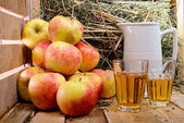 Two glasses of cider with some apples — Foto Stock