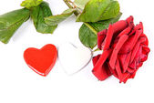 Hearts and rose for Valentine's day — Stock Photo