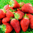 Several strawberries on green grass — Stock Photo #70022453