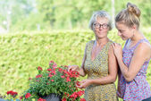 A mother and daughter caring for flowers — Stock Photo