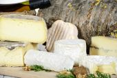 Different french cheeses — Stock Photo