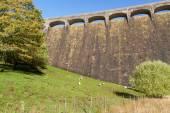 The Claerwen Dam, field in foreground — Stock Photo