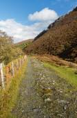 Track of the Elan Valley Railway, now a path. — Stock Photo