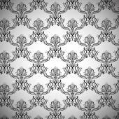 Elegant Stylized Black and White Royal Pattern — Stock Vector
