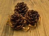 Pine cones with wood background — Stock Photo