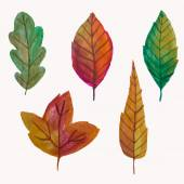 Vector set of watercolor leaves — Stok Vektör