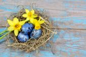 Easter decorations. Eggs in nests on wooden background — Stockfoto