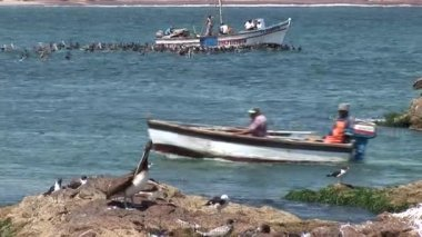 Fishermen in the boat at Small Bay in the Paracas — Stock Video