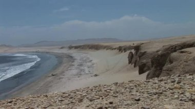 Paracas National Park Reserve — Stock Video