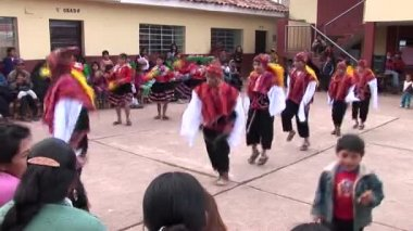 Dancers at traditional parade — Stock Video
