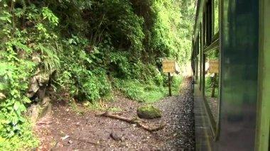 Train ride through Andes — Stock Video