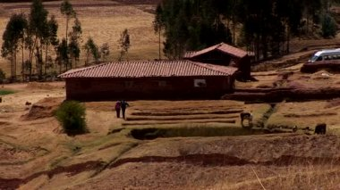 On the  farm in the Andes in Peru — Stock Video