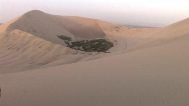 Oasis among sand dunes in Peru desert — Stock Video