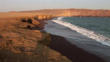 Coast in the Paracas National Park — Stock Video
