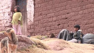 Two kids with a dog at poor district in Cusco — Stock Video