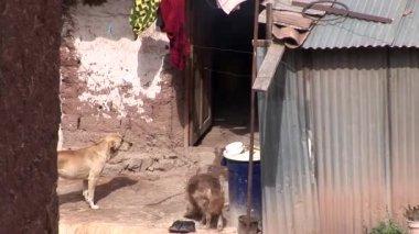 Poor district in Cusco — Stock Video