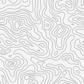 Topographic Map Pattern — Stock Vector