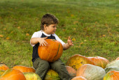 Little boy sitting on a pumpkin — Zdjęcie stockowe