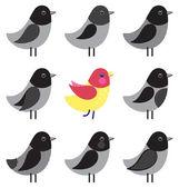 Sada různých ptáků — Stock vektor