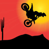 Biker on motorcycle  at sunset. — ストックベクタ